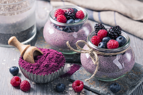 berry powders-bactolac